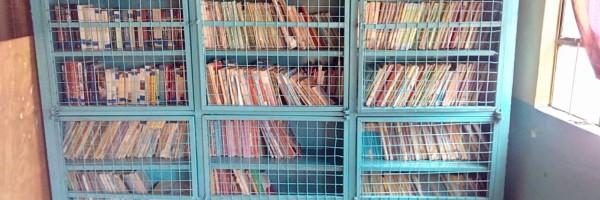 LA inmensa biblioteca de secundaria